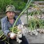 Удивительные грядки Игоря Лядова. Раскрываем секреты высокой урожайности