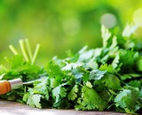 Колоритная пряность: выращивание кинзы для вкуса и здоровья