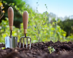 В счет будущего урожая. Какие удобрения надо вносить весной?