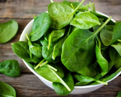 Источник силы и здоровья  — полезный шпинат. Выращиваем в открытом грунте