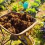 Обзор лучших видов навоза для органического земледелия