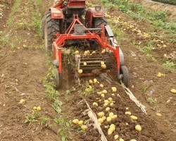 Картофелекопалка своими руками — оборудование, материалы, порядок изготовления