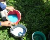 Бордосская жидкость: применение против грибковых заболеваний растений
