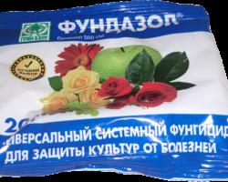 Фундазол: дешевое средство для уничтожения грибка в теплице и в саду
