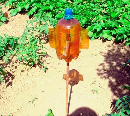 Как из пластиковой бутылки сделать отпугиватель от кротов своими руками 46