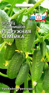 Агрофирма СеДеК