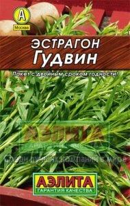 Как выращивать тархун в домашних условиях?