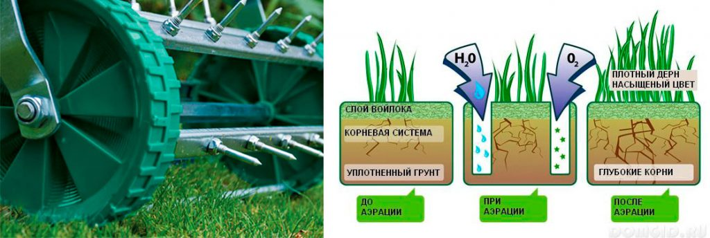 Вертикуттер для газона – надежный помощник озеленителя