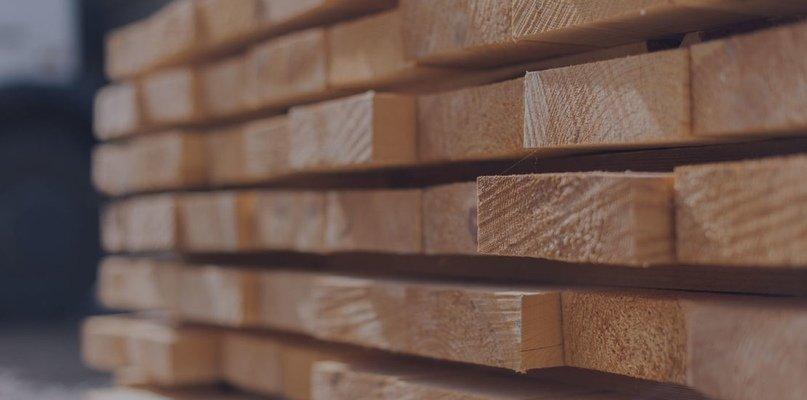 Как вывести и чем обработать грибок в деревянном доме